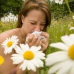 Alergicy – polecamy stronę internetową dla Was